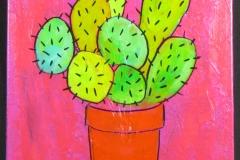 les cactus 4